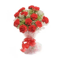 Buy 15 Red Carnation Flowers Bunch